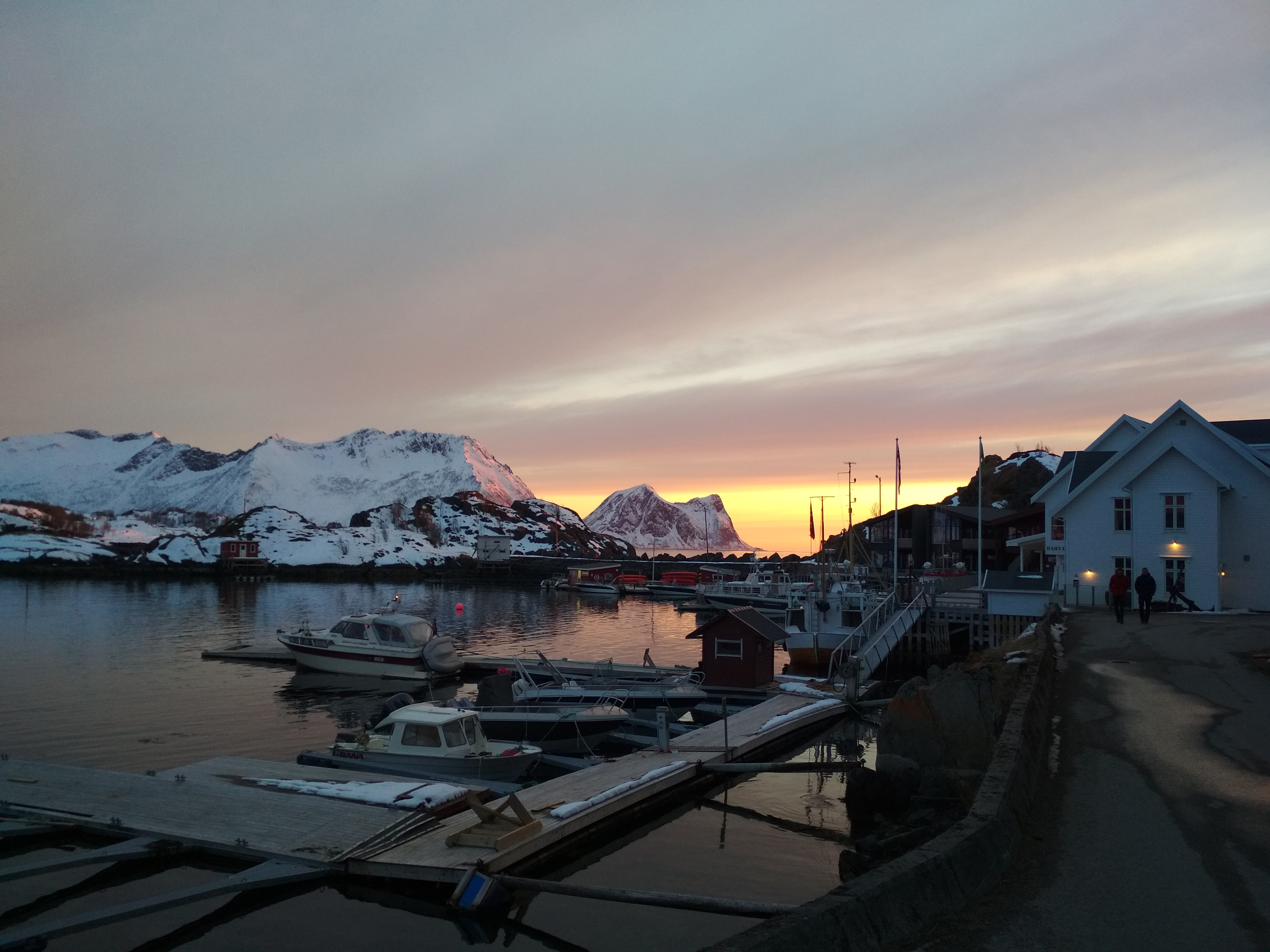 Arctic days on the Planks EP3: Senja: about beauty and